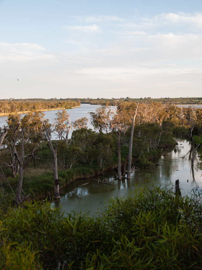 Murray River - Upstream
